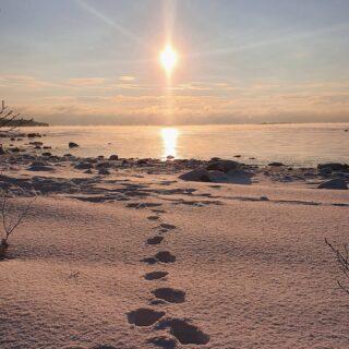 Schnee, Sonnenlicht & Meer = Winterglück 💫 ❄PS: Trotz Sonne haben wir -18 Grad heute 🥶😅#gebet #gebete #affirmation #affirmationen #spirituell #spiritualität #infindung #bewusstsein #erwachen #motivation #Kraft #worte #gedanken #glaube #hoffnung #glück #achtsamkeit #lichtarbeiter #gott #beten #wunder #leben #freiheit #heilung #heilsein #dankbar #weisheit#natur #naturpur #schnee